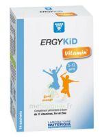 Ergykid Vitamin' Poudre Solution Buvable 14 Sachets à PINS-JUSTARET