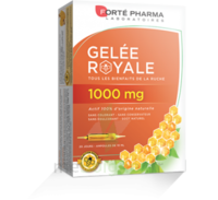 Forte Pharma Gelée Royale 1000 Mg Solution Buvable 20 Ampoules/10ml à PINS-JUSTARET