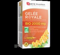 Forte Pharma Gelée Royale Bio 2000 Mg Solution Buvable 20 Ampoules/15ml à PINS-JUSTARET