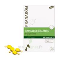 Aromaforce Caps Inhalation Bio B/15 à PINS-JUSTARET