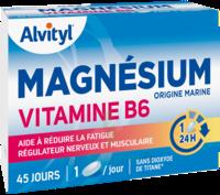Govital Magnésium Vitamine B6 Comprimés B/45 à PINS-JUSTARET