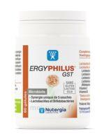 Nutergia Ergyphilus Gst Gélules B/60 à PINS-JUSTARET